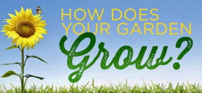 WRITERS GUILD CELEBRATES SPRING: HOW DOES YOUR GARDEN GROW? | BOLLI Matters