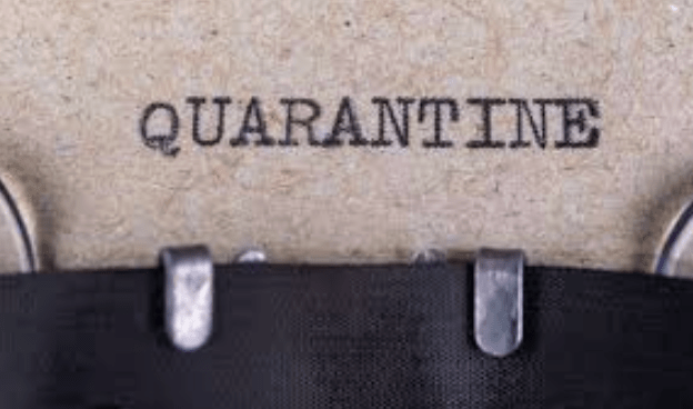 QUARANTINE TALES:  READING IN THE TIME OF COVID-19