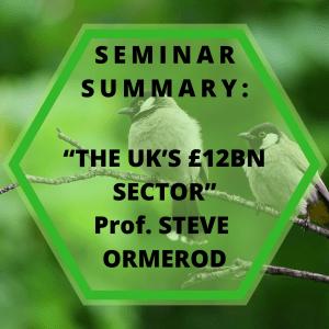 "SEMINAR SUMMARY: ""The Uk's £12bn sector"" Professor Steve"