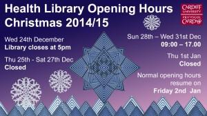 health lib xmas opening 2014