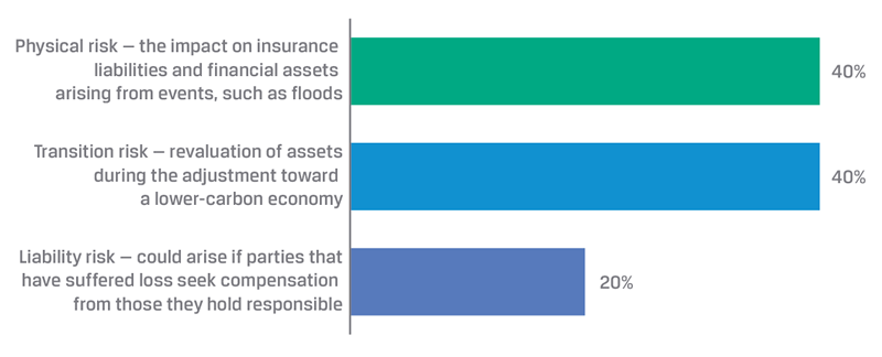 Climate Change and Financial Stability: Which Risk Is Most ...