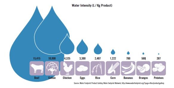 Water Footprint of Major Commodities
