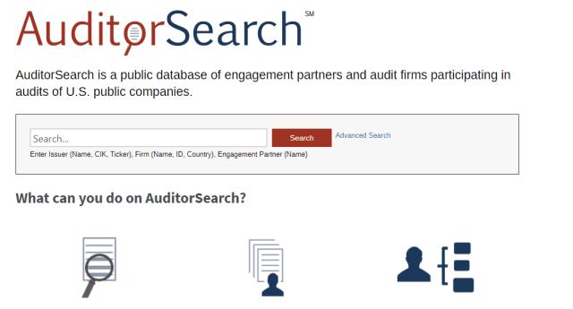 AuditorSearch