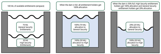 Water Entitlements and Allocations within a Hypothetical Reservoir