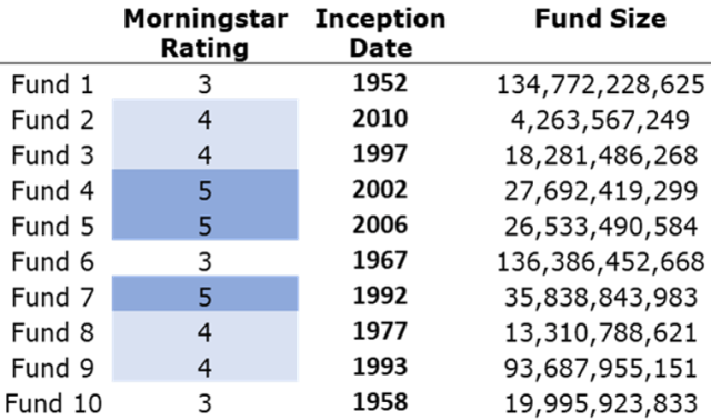 Chart profiling mutual funds by size, inception dates, and Morningstar ratings.