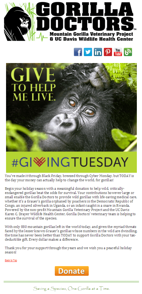 Giving Tuesday email example