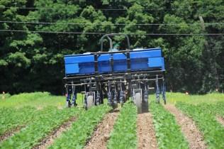 InterSeeder planting cover crop seeds in growing soybean