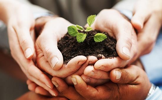hands-crop-Large-blog