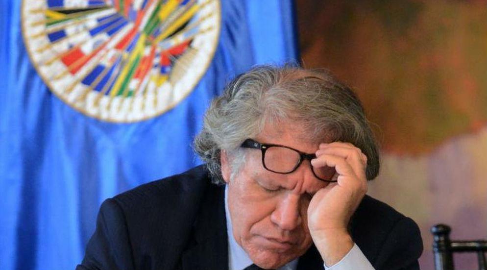 Resultado de imagen para Brasil y Venezuela, doble moral de la OEA