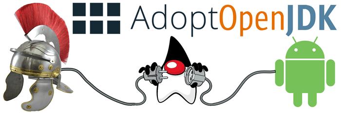 Adopting the OpenJDK