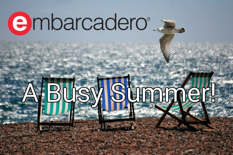 A Busy Summer