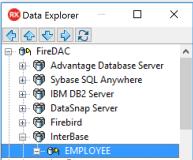 EMS_Data_Explorer