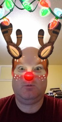 Rudolf has seen bugs you would never believe!