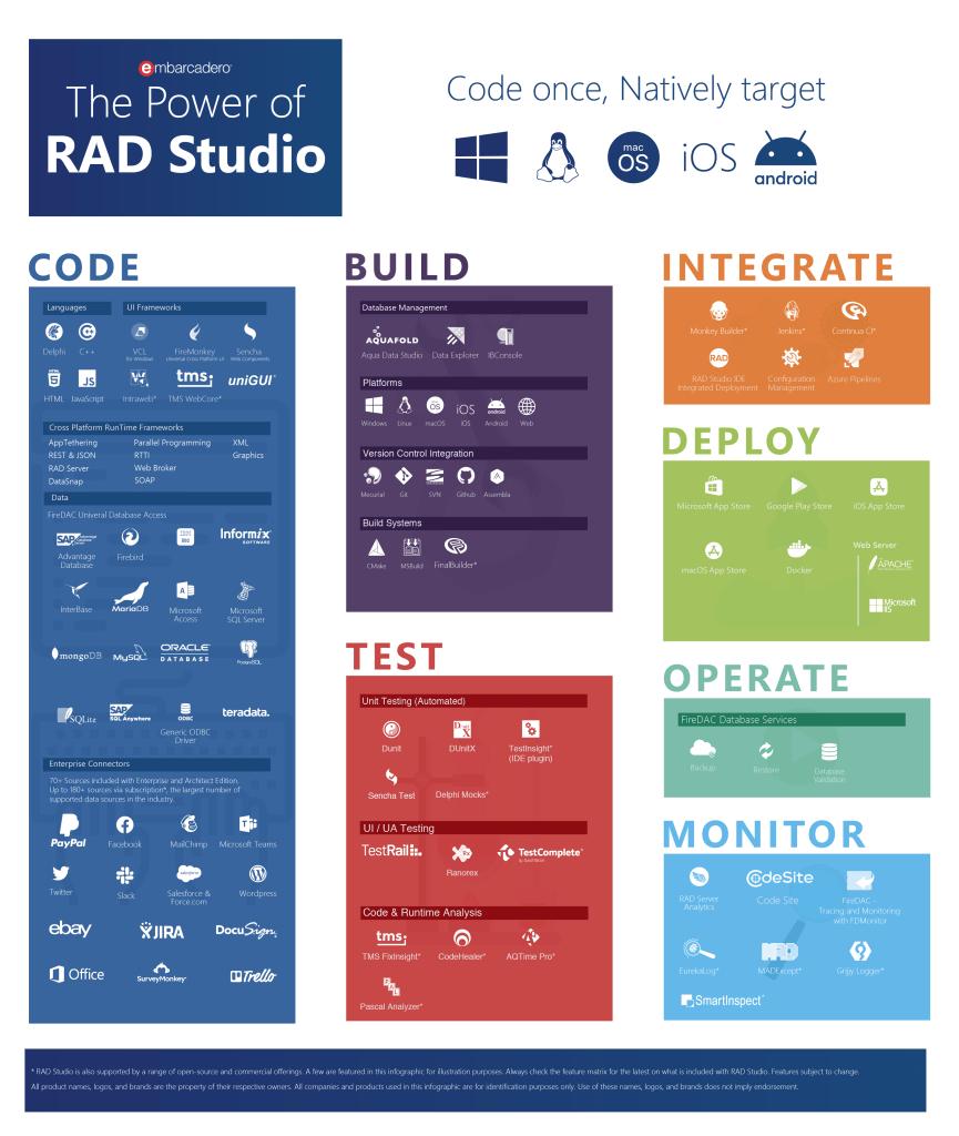 radstudio-infographic