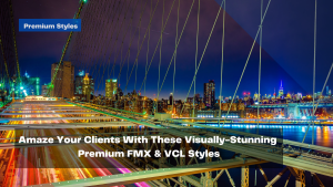 amaze-your-clients-with-these-visually-stunning-premium-fmx-vcl-styles