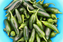 An Image of some peppers from the Hampton Farmers' Market that will soon be posted to their Facebook page.