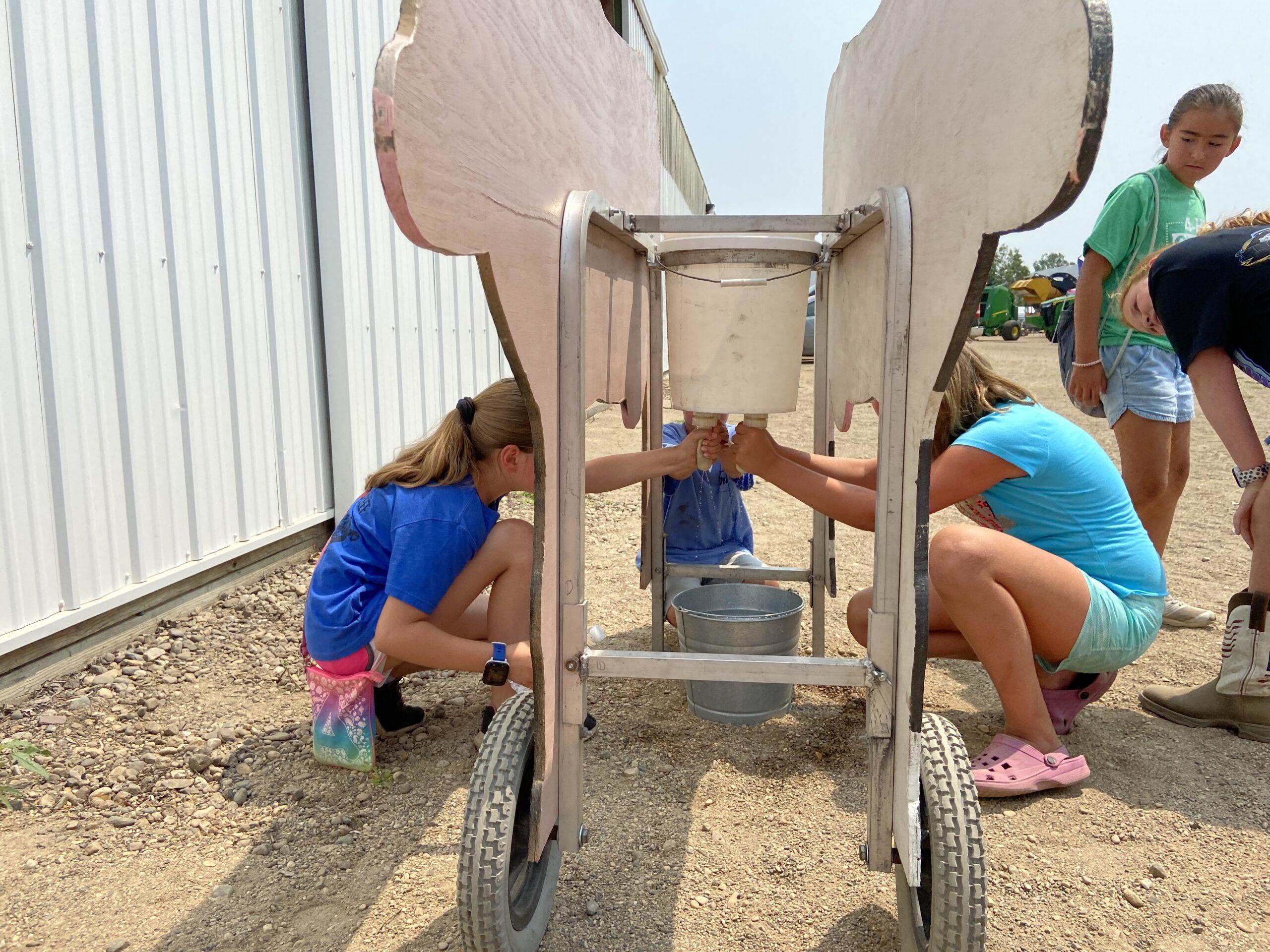 kids milking Bessie