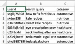 fake dataset