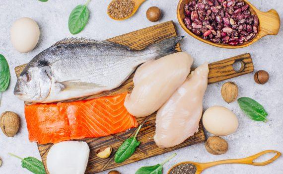 Proteine: i nutrienti plastici che ci ricostruiscono ogni giorno