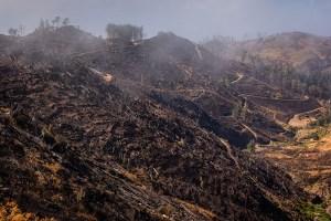 Atos humanos provocam maioria dos incêndios na Espanha