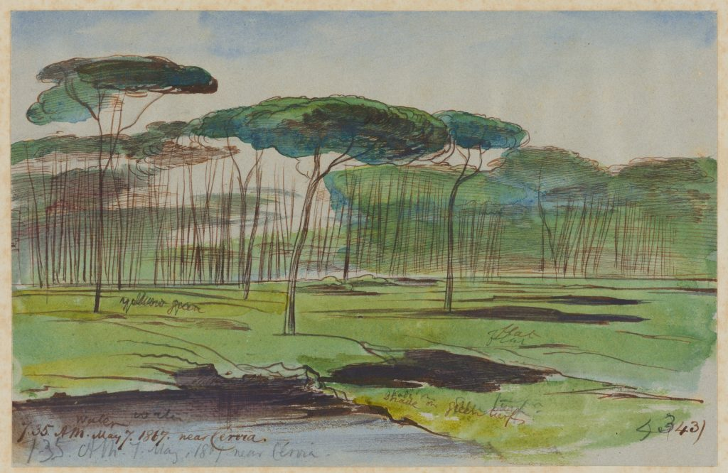 Drawing by Edward Lear of Cervia, Italy