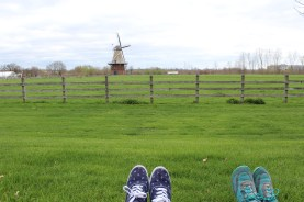 Chillin on Windmill Island and ignoring studying for awhile...