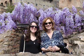 The wisteria is in bloom and made the forum extra beautiful