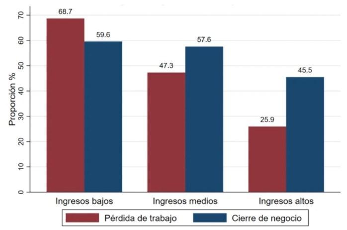La carga desigual de la pandemia