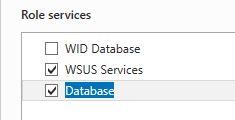 Upgradewsus000020b