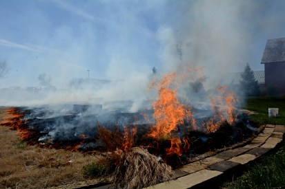 Fires rage strongly within areas containing tall grass. At the source of the flame, a mustard-yellow gas was produced. Photo by Andrew Hartnett