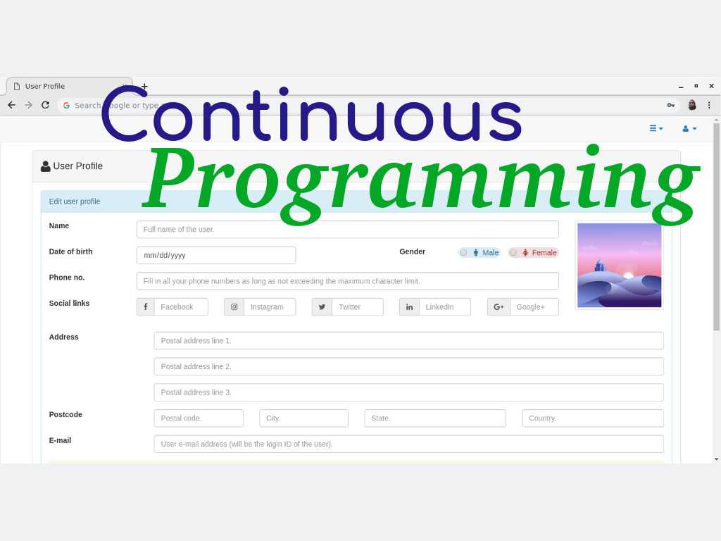 Continuous Programming