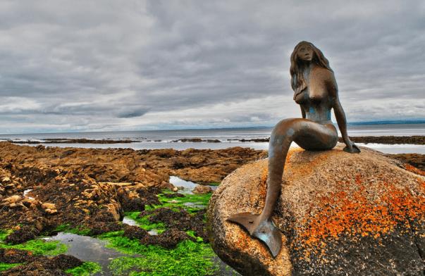 Sirena, imagen por Roy Mackay