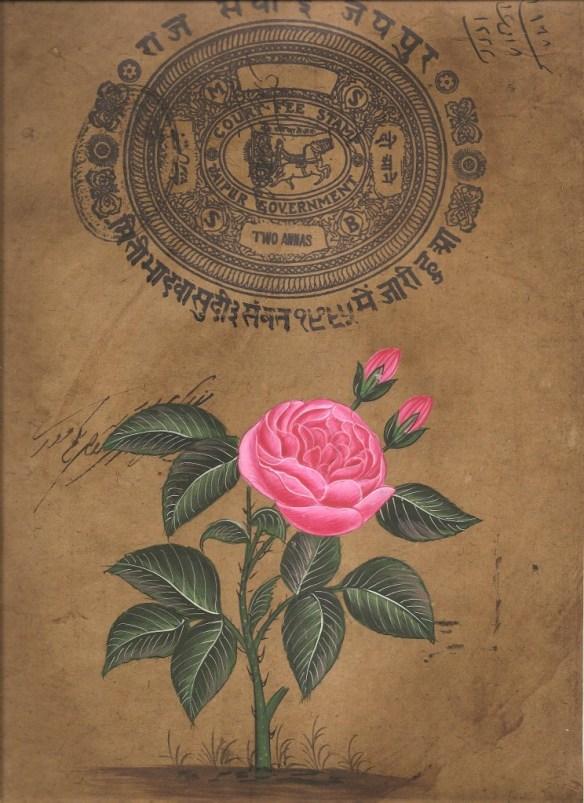 mughal rose