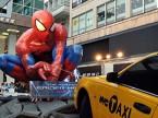 spiderman-RPT