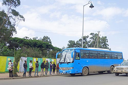 Queuing for public transport in Addis Ababa Credit: Julia Bird