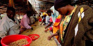 Rwanda's export challenge