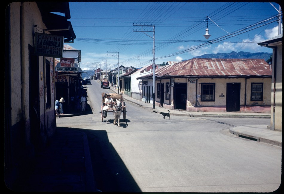 Street scene with older single story buildings. A donkey pulling a cart crosses an intersection is coming toward the viewer. A dog in the street watches.