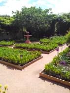 Jardin verdoyant