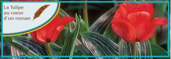 la tulipe au coeur dun roman1