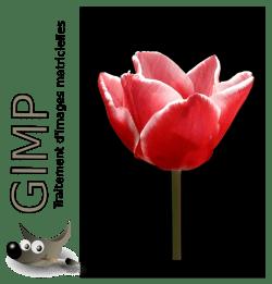 GIMP_slide