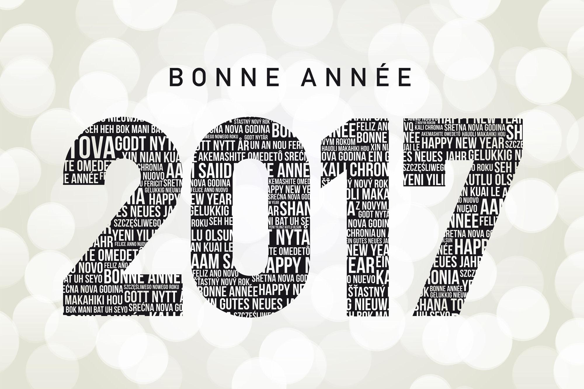 Joyeuses Fêtes et Bonne Année ! ! !