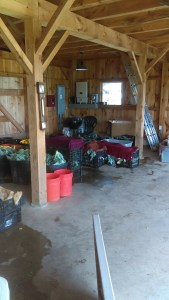 Barn room this past Wednesday before pickup...Got veggies?