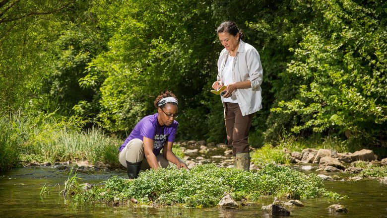 Melida Gutierrez and graduate student collecting soil samples in a stream