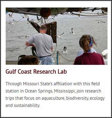 Photo and description of the Gulf Coast Research Lab, as depicted on the facilities and resources page