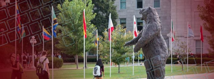Facebook cover photo bear statue
