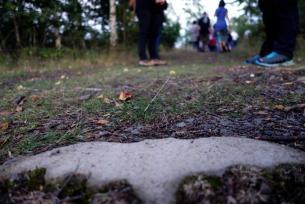 Ein Fledermaussymbol weist den Weg. Foto: NABU/S. Kolberg
