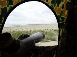 Beobachtung aus dem Tarnzelt heraus