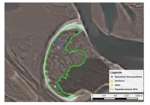 Lage der Dauerquadrate auf der Insel und Vegetationskante 2016