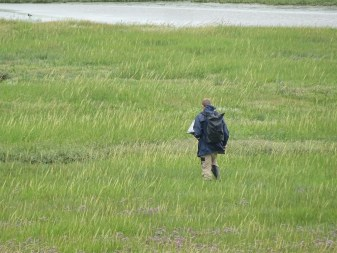 Experten von LEGUAN kartierten die Vegetation der Insel