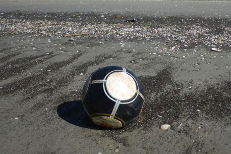 Der erste Fußball im Spülsaum (Foto: Tore J. Mayland-Quellhorst).